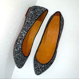 1937 footwear for Madewell. Glitter flats size 8.5